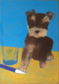 resimler-pastel-dog-portrait-on-blue-paper-height-42-cm.jpg